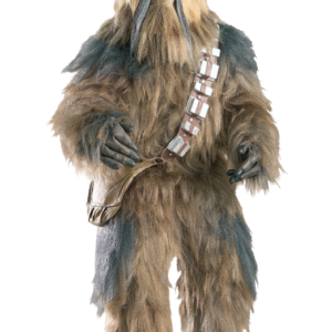 Chewbacca kids costume rental california